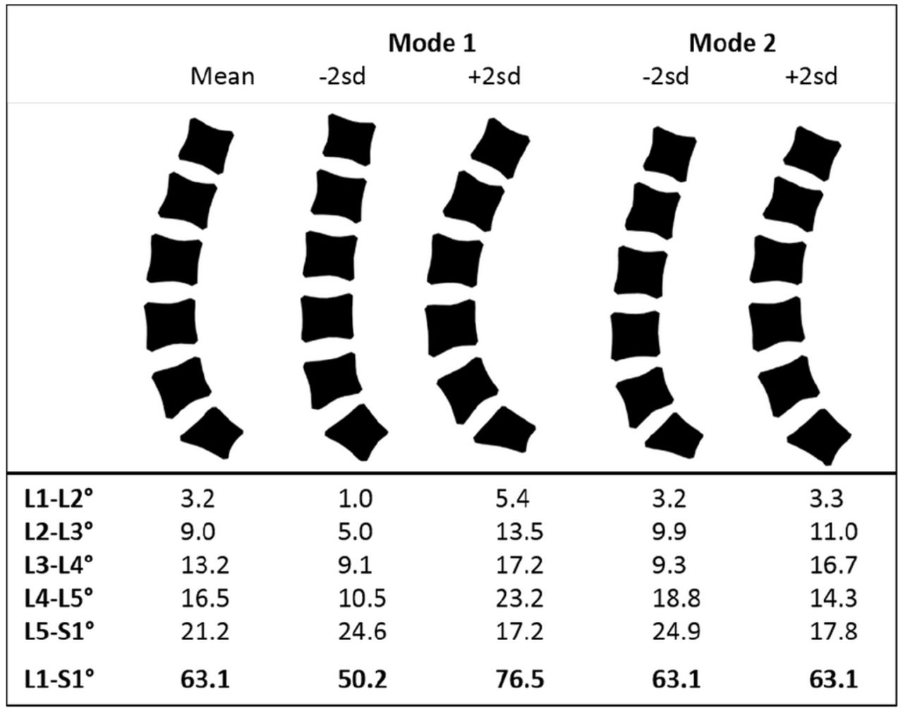 Variation in lifting kinematics related to individual intrinsic